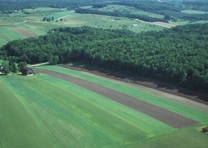 Fallow land strip farming