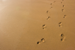 """Psalm 37:23, """"The steps of a good man are ordered by the LORD: and he delighteth in his way."""" www.shadesofgrace.org/"""