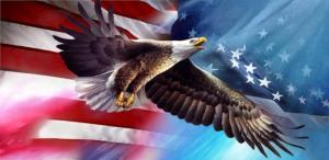 americaneagleflag